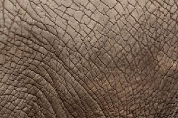 plastisol pele de elefante fremplast - PLASTISOL PELE DE ELEFANTE